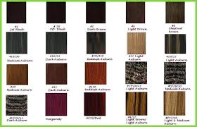 Freetress Wig Color Chart