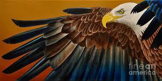 bald eagle painting bald eagle by jurek zamoyski