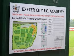 Image result for cat and fiddle training ground guide