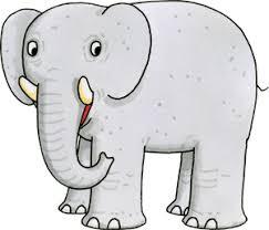 elephant banner image