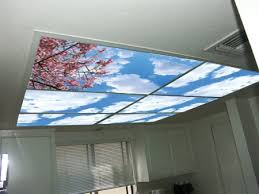 office ceiling light covers. Ceiling Office Ideas Of Fluorescent Light Covers Wonderful Cumulus Ii Skypanels Diffuser