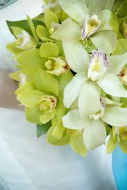 day orchid decor: orchid floral options nk orchid floral options
