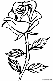 Small Picture Printable Rose Coloring Pages For Kids Cool2bKids Plant and