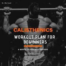 calisthenics workout plan for beginners 6 month calisthenics program