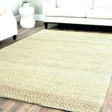 rug cleaning richmond va area rugs area rug cleaning area rug cleaning rug cleaners oriental rug
