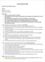 What Is A Birth Plan Example Good Birth Plan Template