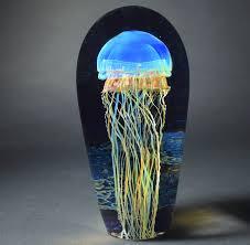 882 17 jellyfish