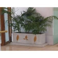 Image Garden White Rectangle Outdoor Or Indoor Planter Box Indiamart White Rectangle Outdoor Or Indoor Planter Box Rs 4000 piece Id