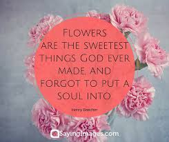 40 Beautiful Flower Quotes Word Porn Quotes Love Quotes Life Impressive Beautiful Flowers With Love Quotes