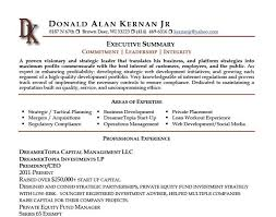 Executive Summary Resume Examples - Text