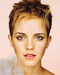 Pixie Cut Hairstyle 100 pixie cuts that never go out of style pixie haircut pixies 4996 by stevesalt.us