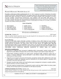 Sample Resume Finance Manager Project Manager Resumes Samples Resume