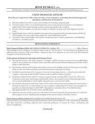 Cfo Resume Examples Pelosleclaire Com