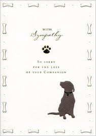 Card For Loss Of Pet Greeting Card Online Shop Greeting Cafe Quire Sympathy Card For