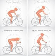 Posture Fit Road Bike Road Bikes Folding Mountain Bike