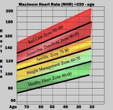 Understanding Your Heart Rate Zones Justrunlah