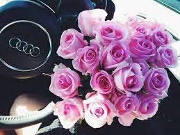 Р. image by Ralica Vasileva | Flowers, Rose