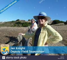 Jan Knight. Jan Knight, Deputy Field Supervisor Stock Photo - Alamy