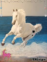 white horses running in water. Delighful Water White Horse Running In Water Foto In White Horses Running Water N