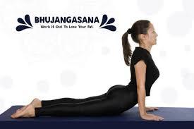 bhujangasana yoga for weight loss