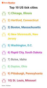 infographic top 10 us tick cities