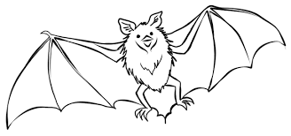 Small Picture Free Printable Bat Coloring Pages For Kids Bat Coloring Pages In