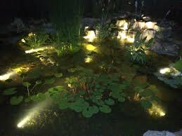 koi pond lighting ideas. simple pond lovely decoration pond lighting stunning why adding led to  your is a must exquisite ideas throughout koi