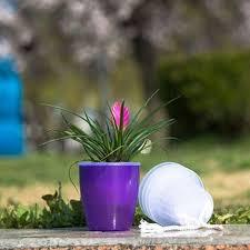 office flower pots. colourful selfwatering plant flower pot garden home office decor planter useful pots n
