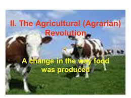 agricultural revolution essay agricultural revolution essays the agricultural revolution impacts google sites