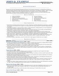 Example Of Business Resume Business Resume Sample Best Popular Business Owner Resume Example 17