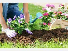 tips to hire the right gardening