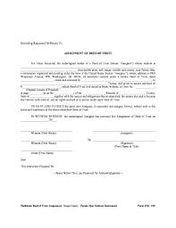 economics essay international trade welfare