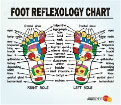 Reflexology Chart Foot Reflexology Chart Vector Illustration