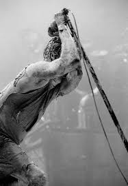<b>Nine Inch Nails</b> music, videos, stats, and photos | Last.fm