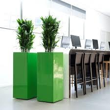 office greenery. Studies Office Greenery Y