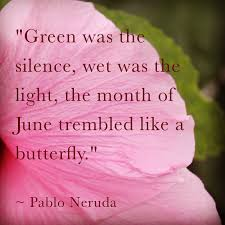 Light Month Green Was The Silence Wet Was The Light The Month Of June