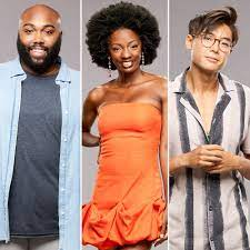 Big Brother 23' Cast Interviews: How ...