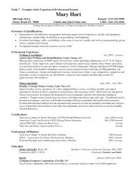 Example Of Resume Experience