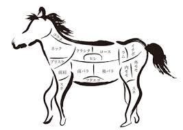 馬刺しの部位ごとの味特徴を徹底解説 馬刺しの達人ガイド