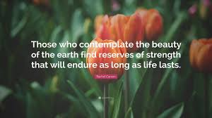 Earth Beauty Quotes Best of Quotes About The Beauty Of The Earth 24 Beautiful Quotes About