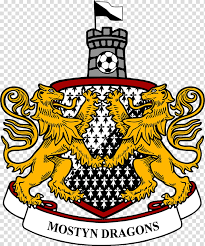 The team compete in the national league, the fifth tier of the english football league system. Champions League Logo Welsh Alliance League Welsh National League Wrexham Area Clwyd East Football League Uefa Champions League Connahs Quay Nomads Fc Efl Championship Team Transparent Background Png Clipart Hiclipart