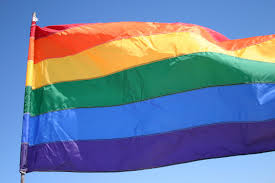 gay marriage reshma s civic issues blog gay pride flag