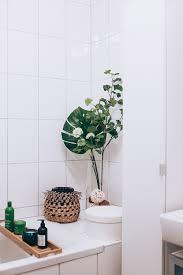 Badezimmer Pflanzen Klein Moderne Badezimmergestaltung Fliesen Für