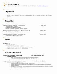 Resume Samples For Retail Store Jobs Professional Retail Store