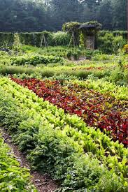 Ornamental Kitchen Garden Potager Image From New Zealand Potager The Ornamental Vegetable