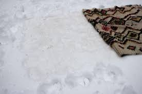 how to clean rugs using snow