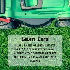 epsom salt for gardening. The Grass Is Always Greener On Side That Uses Epsom Salt. #lawn # Salt For Gardening