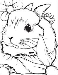 Lynx French Lop Coloring Pages Print Coloring