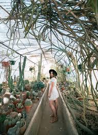 moorten botanical gardens cactarium palm springs california thepeppersage