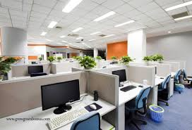 eco friendly office chair.  friendly in todayu0027s business world companies are more willing to make ecofriendly  changes because they know that adding plants bonsai your office is something  and eco friendly office chair